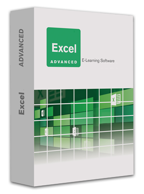 Excel 2013_Advanced.png